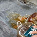 Descarte de oleo vegetal usado