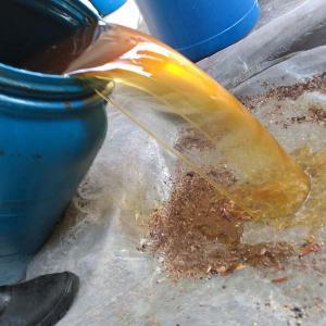 Coleta de oleo usado preço